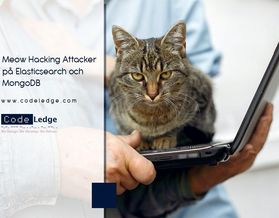 Meow Hacking Attacker på Elasticsearch och MongoDB