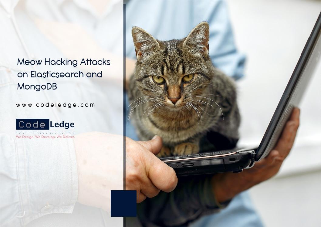 Meow Hacking Attacks on Elasticsearch and MongoDB