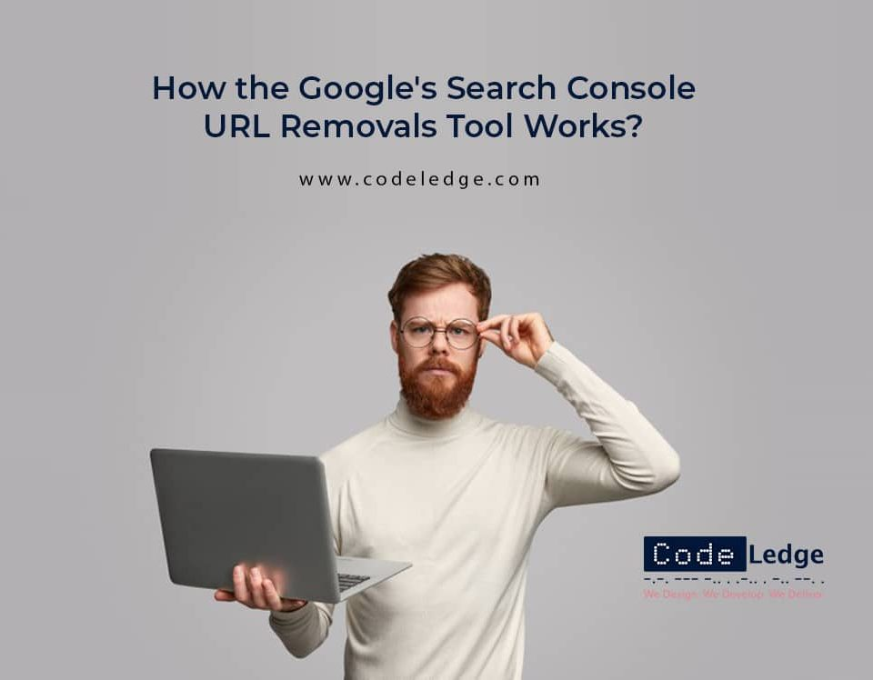 How the Google's Search Console URL Removals Tool Works?
